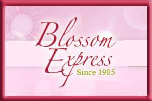 Blossom Express